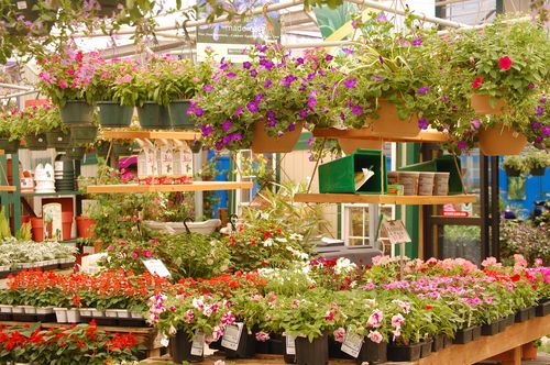 Superbe Atlantic Garden Center Is As Beautiful As Any Garden And A Walk Through The  Many Varieties Of Perennials, Shrubs And Annuals Is Truly Just Like A Walk  In ...