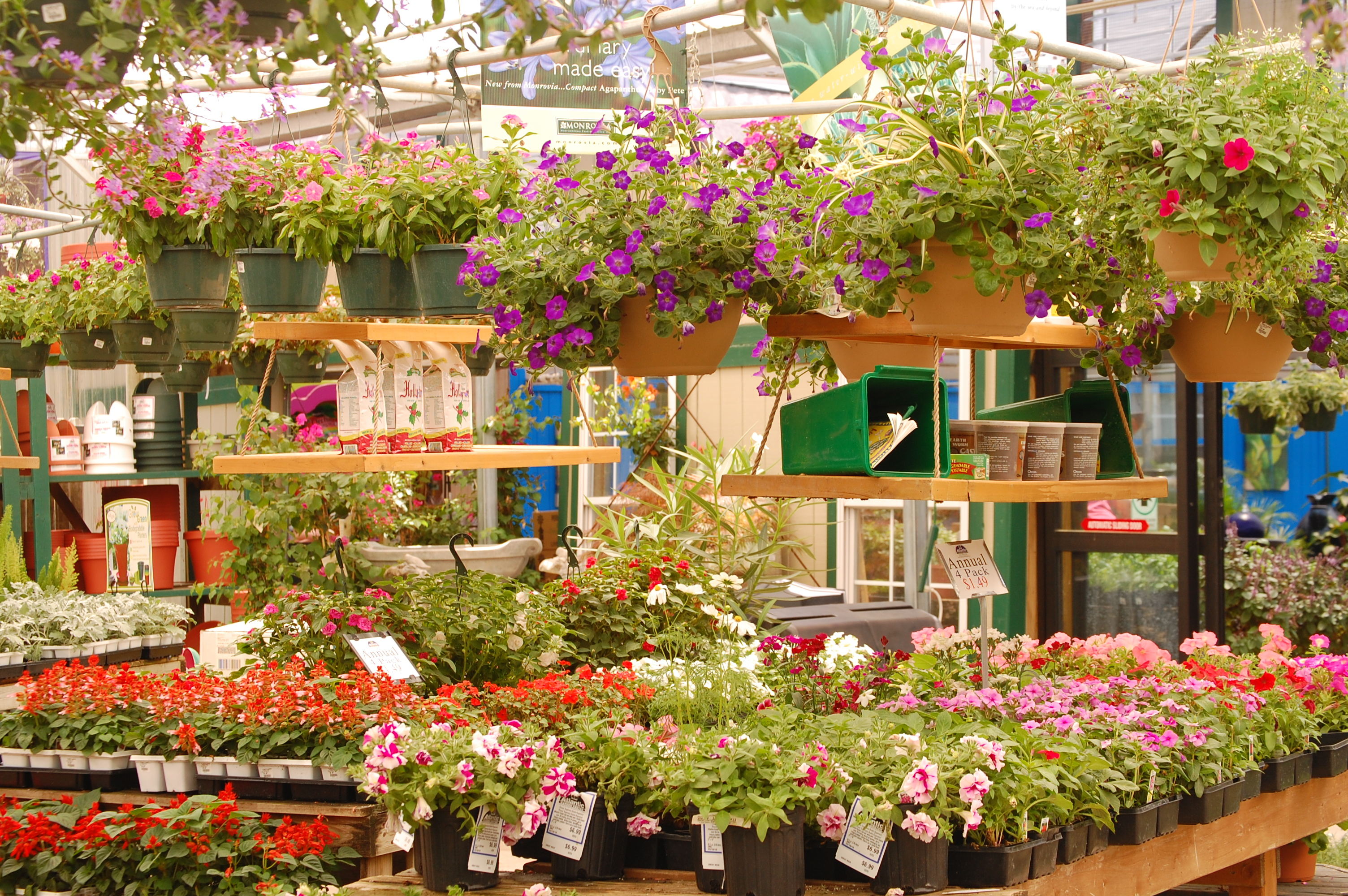 High Quality Atlantic Garden Center Is As Beautiful As Any Garden And A Walk Through The  Many Varieties Of Perennials, Shrubs And Annuals Is Truly Just Like A Walk  In ...